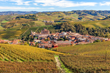 Gourmet Food & Wine Tour of Italy's Piedmont & Emilia Regions...