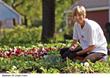 Cedar Rapids Gardening Urban Farm