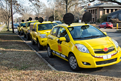 Truly Nolen Mouse Cars, North Carolina Franchise
