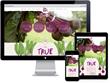 Responsive Wordpress Web Design and Development for Love Beets
