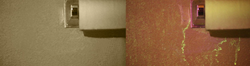 Standard SDFI Camera System & Contrast SDFI Camera System