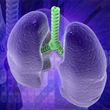 New Oxford Study Says Deliberate Lung Collapse Makes Mesothelioma...