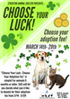 "Be Part of the First Ever ""Choose Your Luck…Choose Your Adoption Fee"" Promotion at Stockton Animal Shelter"
