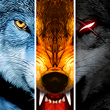 Wolf Online_icon