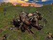 Wolf Online - Hunting rhinoceros