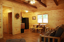 Refreshing Mountain Family Cabin Rentals