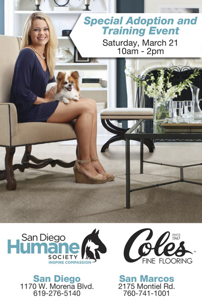 San Diego Humane Society And Coles Fine Flooring Pet Adoption And Training  Event