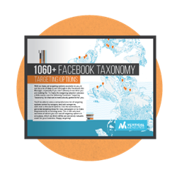 Facebook ad targeting, Vertical Measures, taxonomy