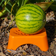 Protect Your Fruit and Vegetables With Melon Saver Support System -...