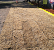 Drivable Grass installation at Super-Sod of Jacksonville, FL