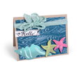 Crafts Leader Sizzix to Offer Beach-Themed Collection by Sharyn Sowell
