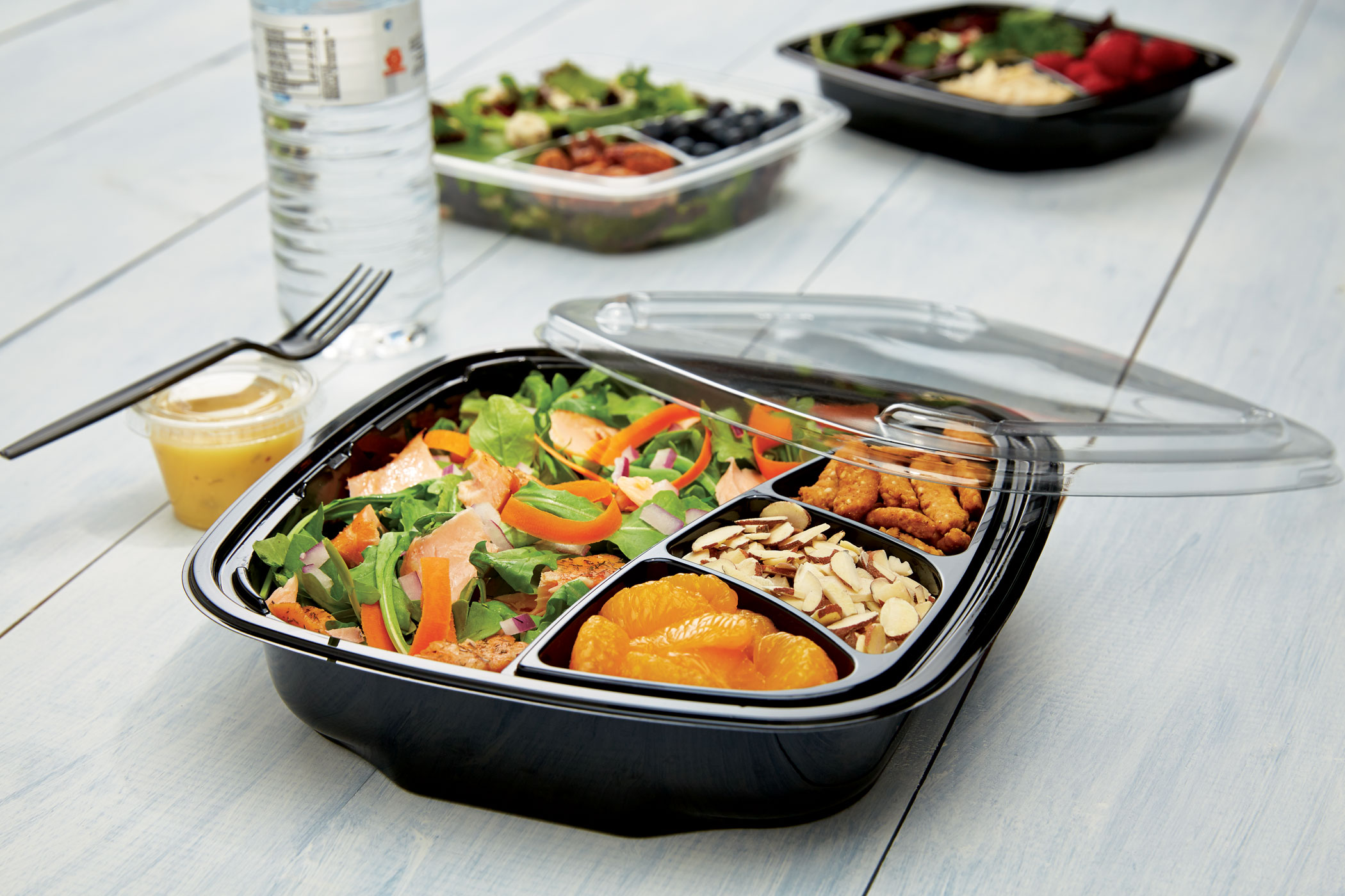 Placon S Selectables Customizable Stock Plastic Packaging