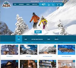 DiscoverAlta.com Website