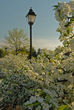 The Franklin County Visitors Bureau Invites Visitors to Experience Spring in Franklin County