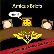 Gay Marriage Amicus Brief Printing