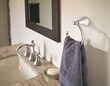 Moen Wynford Faucet and Towel Ring