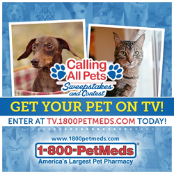 1-800-PetMeds Calling All Pets