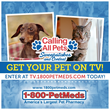 1-800-PetMeds® Seeks Pet TV Stars with Calling All Pets...