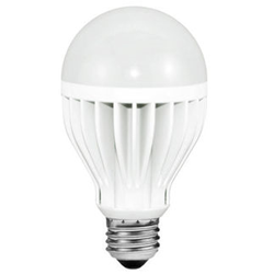 125 Watt LED Light Bulbs at 1000Bulbs.com