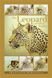 Francesco Marincola releases 'The Leopard and Other Stories'