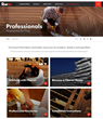 Fiberon International Website Pros Site