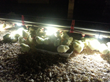 AHPharma Introduces AviLighting™ LED Water Lights for Poultry...