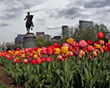 Boston Park Plaza Hotel – A Boston Hotel Announces Special Offers for Spring Visitors