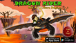 Main Image of Dragon Rider