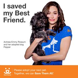 http://www.bestfriends.org/save