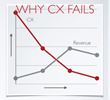 Common reality is that many companies fail when they attempt to address CX on their own; eventually revenue declines along with the customer experience.