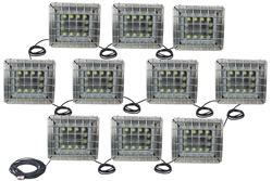 Class 1 Division 1 & 2, Class 2 Division 1 & 2 Explosion Proof String Light Set