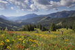Biking Bliss with 750 Miles of Trails in Crested Butte & the...