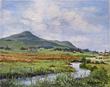 Stream in Wakkerstroom by De Lange