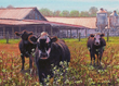 The Barnyard Welcoming Committee by Wes Siegrist