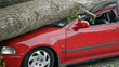Auto Insurance Policies Can Help Drivers Protect Their Cars During A Storm!