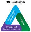 Project Management Institute Chicagoland Chapter announces panelists...