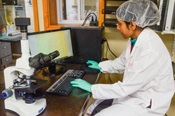 Dr. Mitali Raval uses phase contrast microscope for product analysis