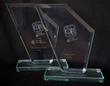 The two awards from the evening for 'Customer Service' and 'Business of the Year'