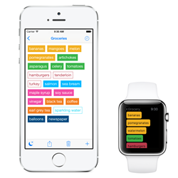 Idealist Grocery Shopping List with Apple Watch Support