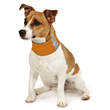 Insect Shield for Pets Neck Gaiter