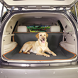 Insect Shield for Pets Cargo Cover