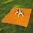 Insect Shield for Pets Blanket