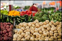 Certified Farmer's Market in Old Town La Quinta
