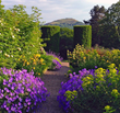 Perrycroft Gardens will open to the public on selected Sundays as part...