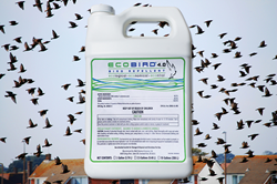 EcoBird 4.0 bird repellent