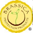 Brassica logo
