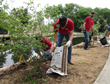 tree planting, earth day, san antonio, river walk