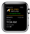 Real-Time Flight Information, at the Flick of the Wrist