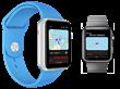 SeaNav on Apple Watch