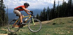 Carvers Breckenridge Bike Rentals